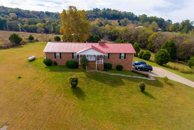 Mount Pleasant Single Family Home For Sale: 3897 Booker Ridge Rd