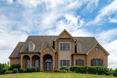 Brentwood  Single Family Home For Sale: 9411 Big Horn Rdg