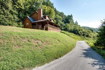 Smithville TN Single Family Home For Sale: $264,900