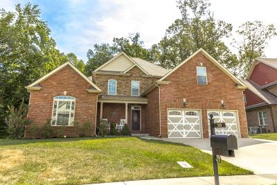 Clarksville Single Family Home For Sale: 355 N Stonecrop
