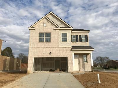 Spring Hill Single Family Home For Sale: 1000 Lonergan Circle