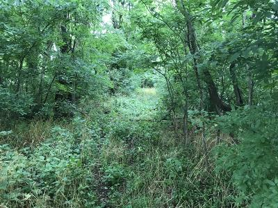 Clarksville Residential Lots & Land For Sale: 404 Howell Dr