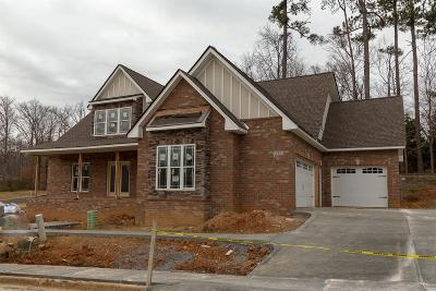 Clarksville Single Family Home For Sale: 572 Summit View Circle