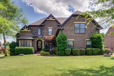 Williamson County Single Family Home For Sale: 4035 Miles Johnson Pkwy