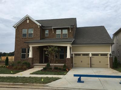 Hendersonville Single Family Home For Sale: 103 Championship Place #291