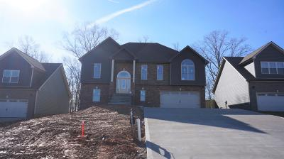 Clarksville Single Family Home For Sale: 51 Griffey Estates