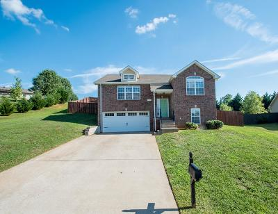 Clarksville Single Family Home For Sale: 597 Anchor Ct