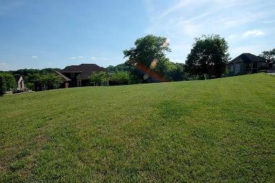 Goodlettsville Residential Lots & Land For Sale: 2205 Kayla Dr