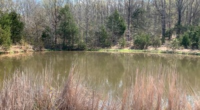 Christiana TN Residential Lots & Land For Sale: $800,000
