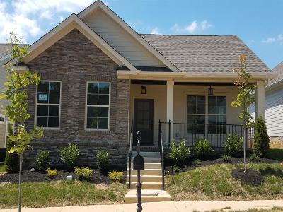 Nolensville Single Family Home For Sale: 4068 Liberton Way