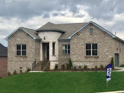 Goodlettsville Single Family Home For Sale: 104 Copper Creek Drive