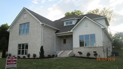 Mount Juliet Single Family Home For Sale: 102 Eston Way