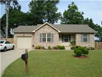 Ashton Place Single Family Home For Sale: 3313 S S Senseney Cir