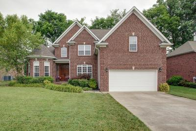 Spring Hill  Single Family Home For Sale: 1007 Neal Crest Cir