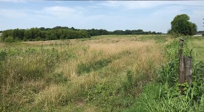 Clarksville Residential Lots & Land Under Contract - Showing: 1 Walter Rd