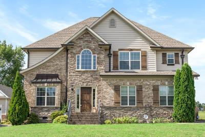 Clarksville Single Family Home For Sale: 227 Cullom Way