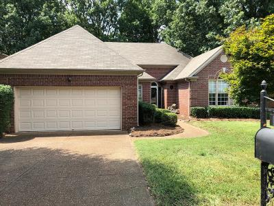 Brentwood  Single Family Home Under Contract - Showing: 317 Culpepper Ct