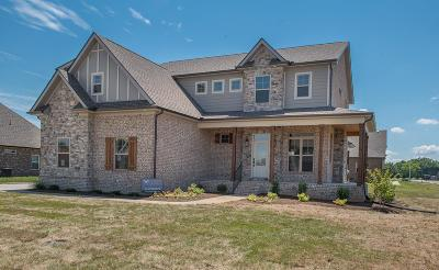 Murfreesboro Single Family Home For Sale: 3912 Merryman Lane (Lot 75)