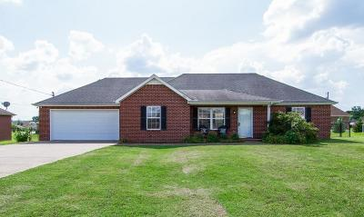 Smyrna Single Family Home Under Contract - Showing: 1005 Ezra St
