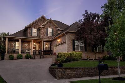 Williamson County Single Family Home For Sale: 156 Rich Cir
