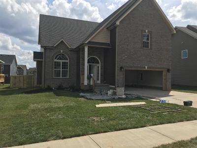 Clarksville Single Family Home For Sale: 91 Locust Run