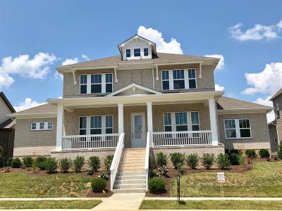 Nolensville Single Family Home For Sale: 668 Vickery Park Dr L-84