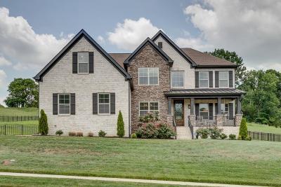 Nolensville Single Family Home For Sale: 9236 Holstein Dr