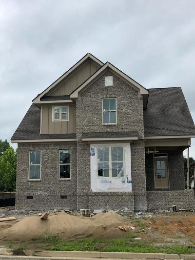Spring Hill Single Family Home For Sale: 4173 River Links Dr