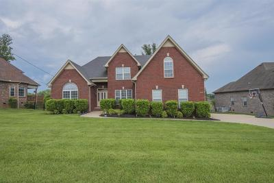 Smyrna Single Family Home For Sale: 330 Saint Francis Ave