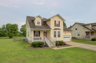 Christian County Single Family Home For Sale: 11241 Bell Station Road