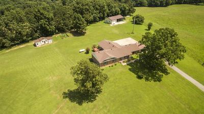 Vanleer TN Single Family Home For Sale: $620,000