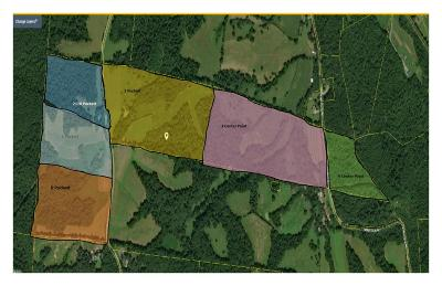 Cumberland Furnace Residential Lots & Land For Sale: 3 Center Point
