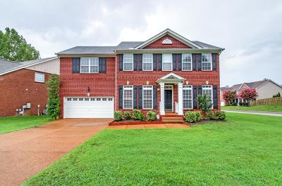 Spring Hill Single Family Home For Sale: 1003 Williford Ct
