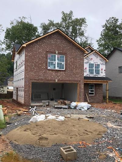 Clarksville Single Family Home For Sale: 138 Rossview Place