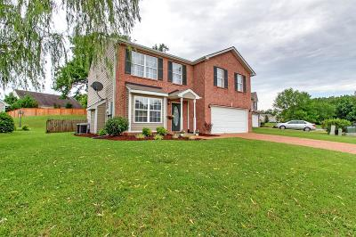 Mount Juliet Single Family Home For Sale: 6007 Mountview Dr
