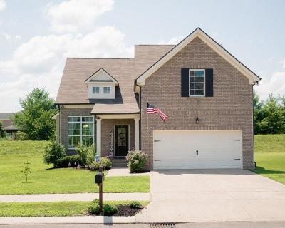 Spring Hill Single Family Home For Sale: 1085 Achiever Cir