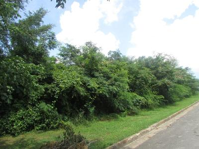 Lawrenceburg Residential Lots & Land For Sale: S Lafayette Ave