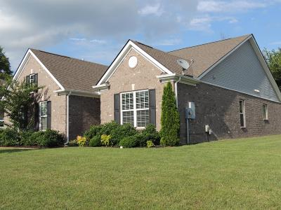 Spring Hill Single Family Home For Sale: 2060 Morton Dr