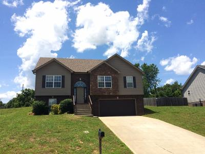 Clarksville Single Family Home For Sale: 969 Ernest Stewart Dr