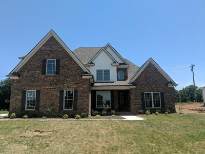 Rutherford County Single Family Home Under Contract - Not Showing: 2058 Trout Trail (Lot 2)