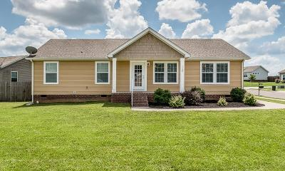 Spring Hill  Single Family Home For Sale: 1159 Wrights Mill Rd