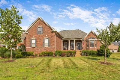 Franklin Single Family Home For Sale: 7183 Tullamore Ln
