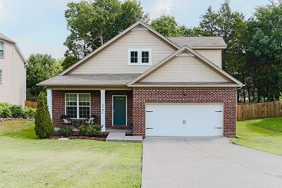 Smyrna Single Family Home For Sale: 3731 Montgomery Way