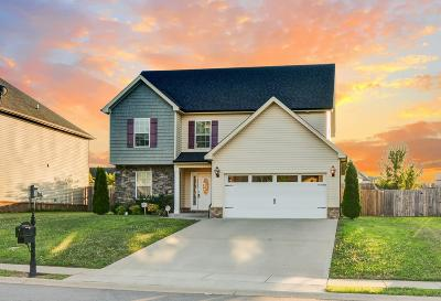 Clarksville Single Family Home For Sale: 2988 McManus Cir