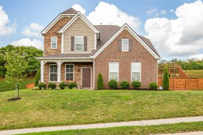 Spring Hill Single Family Home For Sale: 2317 Dewey Drive