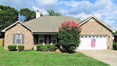 Smyrna Single Family Home Under Contract - Showing: 208 Mill Creek Ct