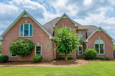 Hendersonville Single Family Home For Sale: 100 S Laurens Way