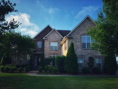 Sumner County Single Family Home For Sale: 677 Starpoint Dr