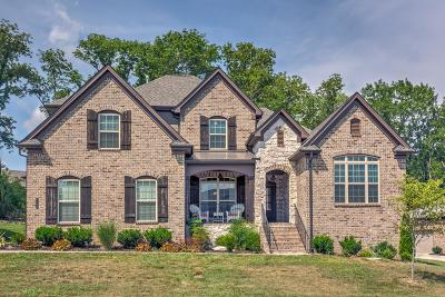 Nolensville Single Family Home For Sale: 5108 Falling Water Rd