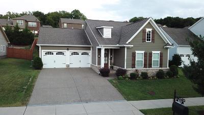 Franklin Single Family Home For Sale: 255 Irvine Ln